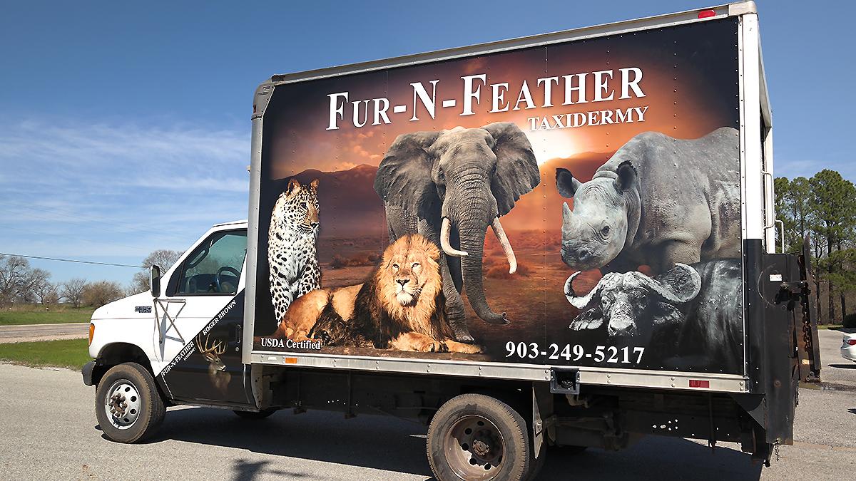 Fur N Feather Taxidermy Box Truck Wrap Car Wrap City